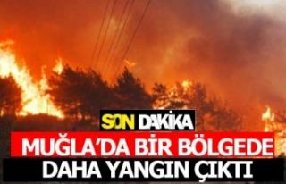 Muğla'da bir bölgede daha yangın çıktı
