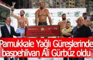 Pamukkale Yağlı Güreşlerinde başpehlivan Ali...