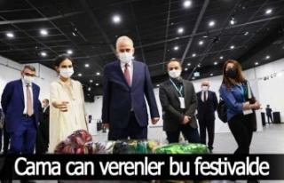 Cama can verenler bu festivalde