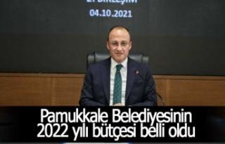 Pamukkale Belediyesinin 2022 yılı bütçesi belli...
