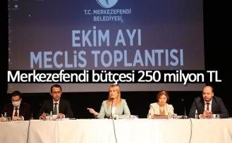 Merkezefendi bütçesi 250 milyon TL