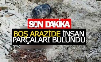 Boş arazide insan parçaları bulundu!