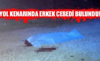 Yol kenarında erkek cesedi bulundu!