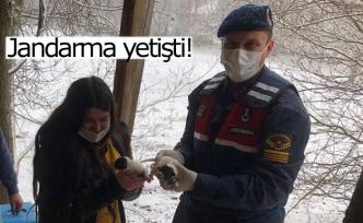 Jandarma yetişti!