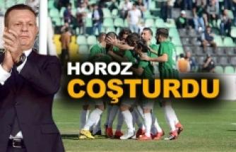 HOROZ COŞTURDU