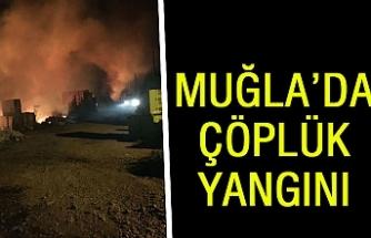 Muğla'da çöplük yangını