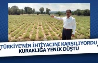 Türkiye'nin ihtiyacına kuraklık darbesi