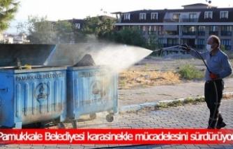 Pamukkale Belediyesi karasinekle mücadelesini sürdürüyor