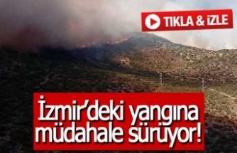 İzmir'deki yangına müdahale sürüyor!