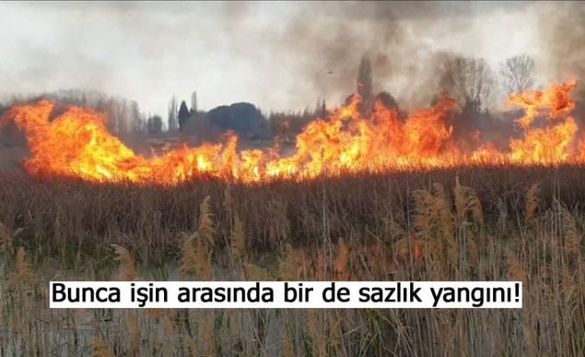 Bunca işin arasında bir de sazlık yangını!