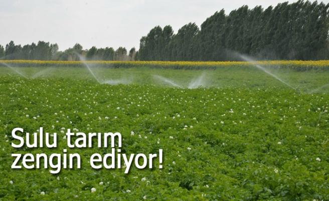 Sulu tarım zengin ediyor!