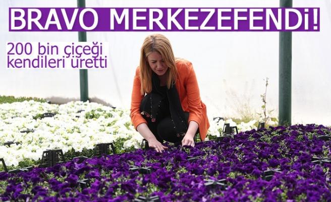 200 bin çiçeği kendileri üretti