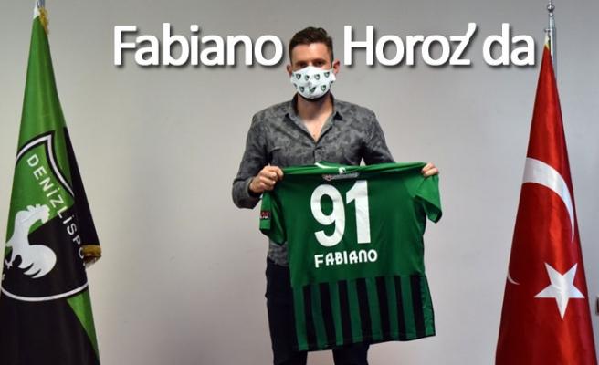 Fabiano Denizlispor'da