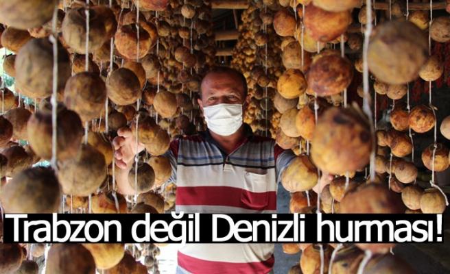Trabzon değil Denizli hurması!