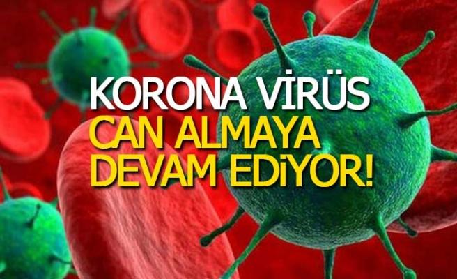 Korona virüs bir cana daha kıydı