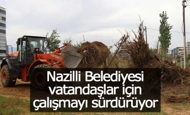 Nazilli Belediyesi ve DSİ'den kanal ıslahında ortak çalışma