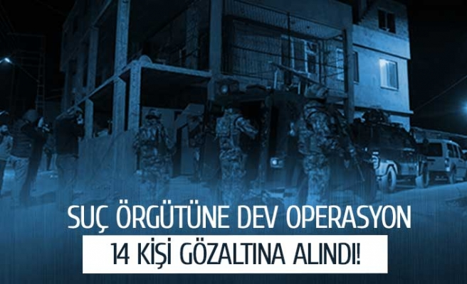 Suç örgütüne dev operasyon!