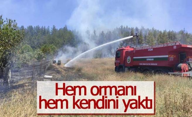 Hem kendini hem ormanı yaktı