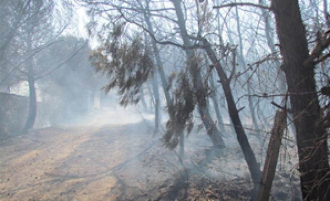 Yerleşim yerlerini tehdit eden yangın