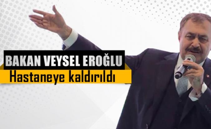 Bakan Veyse Eroğlu hastaneye kaldırıldı