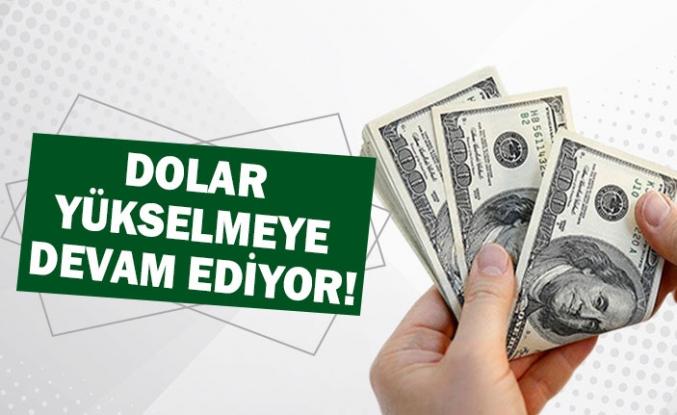 Dolar yükselmeye devam ediyor!