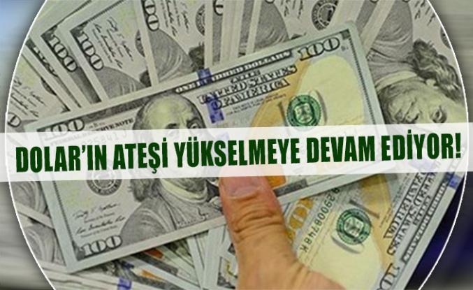 Dolar'ın ateşi yükselmeye devam ediyor!