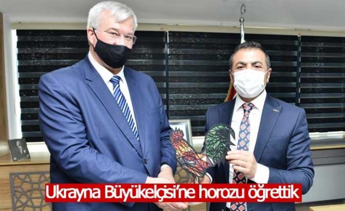 DTO Başkanı Erdoğan, Büyükelçi'ye Denizli Horozu Hediye Etti
