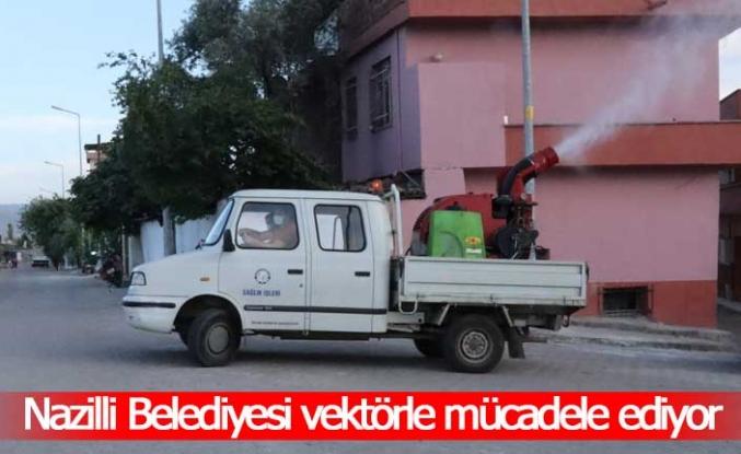Nazilli Belediyesi vektörle mücadele çalışmalarında hız kesmiyor