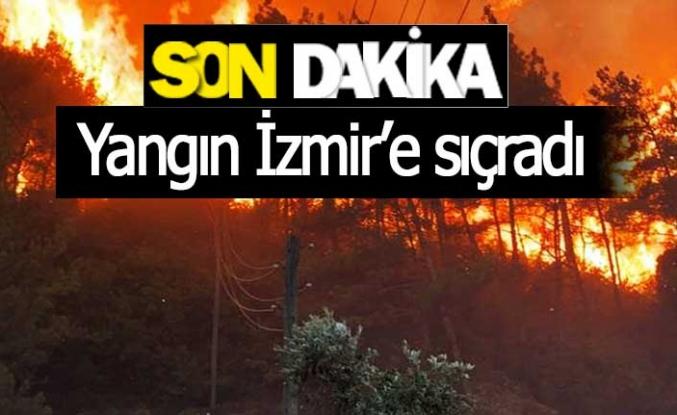 Yangın İzmir'e de sıçradı