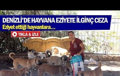 Denizli'de hayvana eziyete ilginç ceza!