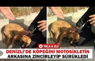 Denizli'de köpeğini motosikletin arkasına zincirleyip sürükledi