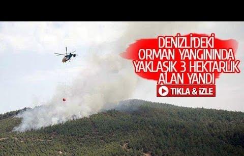 Denizli'deki orman yangınında yaklaşık 3 hektarlık alan yandı