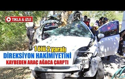 Direksiyon hakimiyetini kaybeden araç ağaca çarptı
