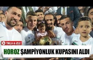 Horoz şampiyonluk kupasını aldı